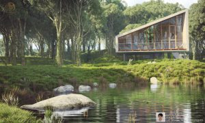 House in forest – Trương Xuân Sáng